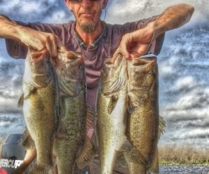 Steve Allen: Florida Angler and Creator of the Bass Thugs Trail – Episode 7 – The One More Cast Show